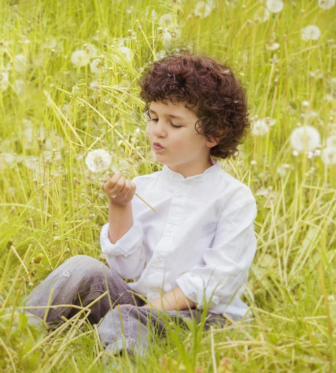 bloom-blossom-boy-160594